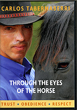 Through The Eyes Of The Horse by Carlos Tabernaberri