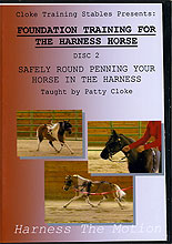 Safely Round Penning Your Horse In The Harness by Patty Cloke