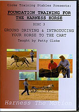 Ground Driving & Introducing Your Horse To The Cart by Patty Cloke