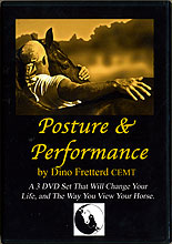 Posture & Performance by Dino Fretterd