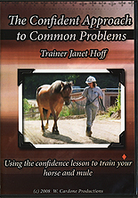 The Confident Approach to Common Problems by Janet Hoff