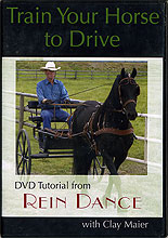 Train Your Horse to Drive by Clay Maier