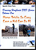 Horse Tricks So Easy Even A Kid Can Do It by Spanish Vision