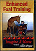 Enhanced Foal Training : Beyond Imprinting by Allen Pogue