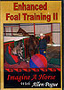 Enhanced Foal Training II  by Allen Pogue