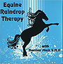 Equine RainDrop Therapy by Heather Mack