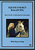 Equine Energy Balancing by Nancy Camp