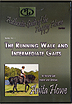 The Running Walk and Intermediate Gaits by Anita Howe
