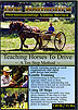 Teaching Horses to Drive by Doc Hammill