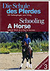 Schooling a Horse Part 3 - Lateral Work as a Key to Success by Rudolf Zeilinger